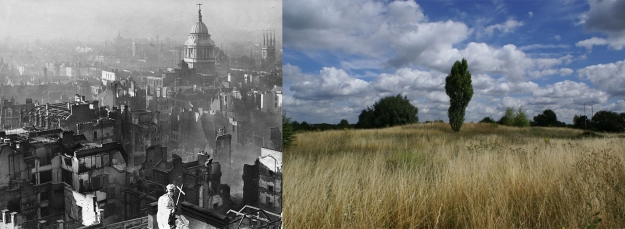 St Pauls after the Blitz, H. Mason (Public Domain) via Wikimedia Commons; Eastbrookend Country Park Dagenham, August 2013, Lindsay Bremner