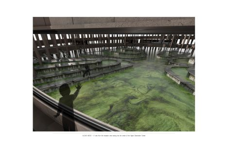 Alex Jaggs: Algae Observation Centre_Render