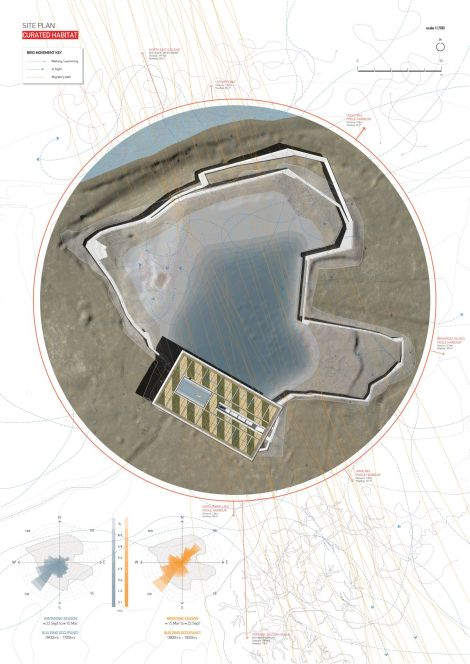 Lawrence Carlos: Institute for Environmental Ornothology_ Site Plan