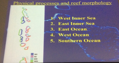 Physical processes and reef morphology
