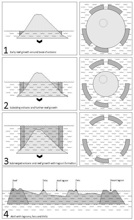 Diagram of atoll formation. Lindsay Bremner.