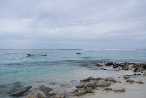 Hulhumale reef, 2015. Photograph: Lindsay Bremner
