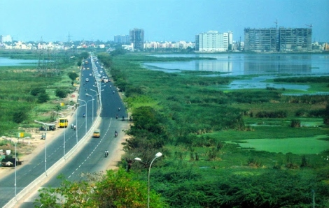 View across Pallikanarai Marsh from 200 ft Road https://tvaraj.files.wordpress.com/2014/02/palikaranai-100-feet-rd-pallikaranai-chennai-posted-by-arun-christopher-ilovchennai-blogspot-in1.jpg